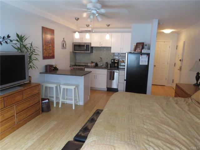 2201 Palmer Avenue 1N, New Rochelle, NY 10801 (MLS #4921445) :: Shares of New York