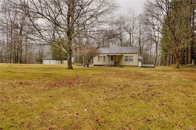 77 Burns Road, Forestburgh, NY 12729 (MLS #4921879) :: Mark Seiden Real Estate Team