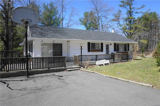 2 Willow Lane, Monticello, NY 12701 (MLS #4922163) :: William Raveis Legends Realty Group