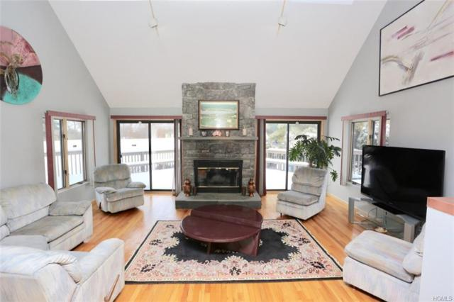 37 Morgan Lane, Poughquag, NY 12570 (MLS #4922276) :: William Raveis Legends Realty Group