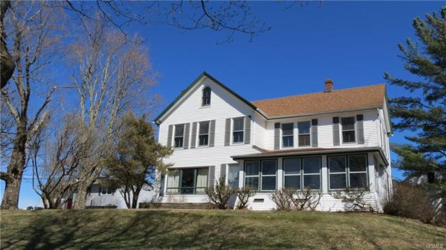 115 Dr Duggan Road, Bethel, NY 12720 (MLS #4922375) :: Stevens Realty Group