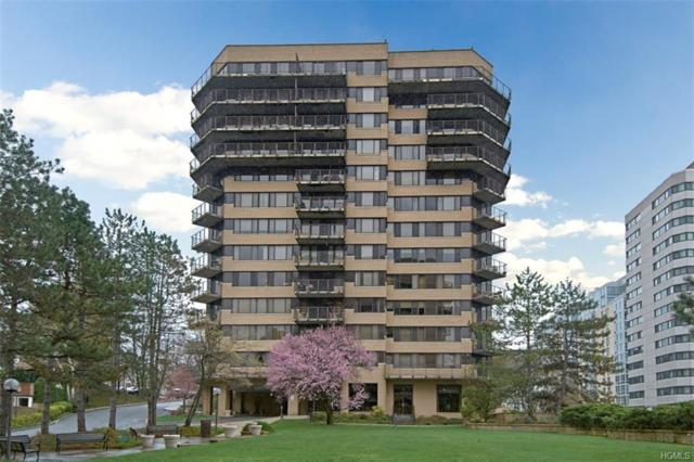 25 Rockledge Avenue #1113, White Plains, NY 10601 (MLS #4922517) :: Mark Boyland Real Estate Team