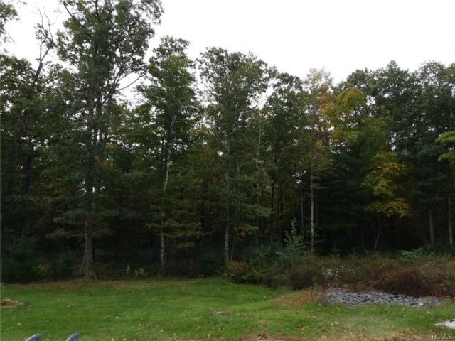 6 Masten Lake Court, Wurtsboro, NY 12790 (MLS #4922680) :: Mark Seiden Real Estate Team