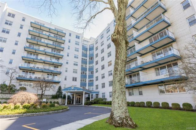 499 Broadway 5H, White Plains, NY 10603 (MLS #4922767) :: William Raveis Baer & McIntosh