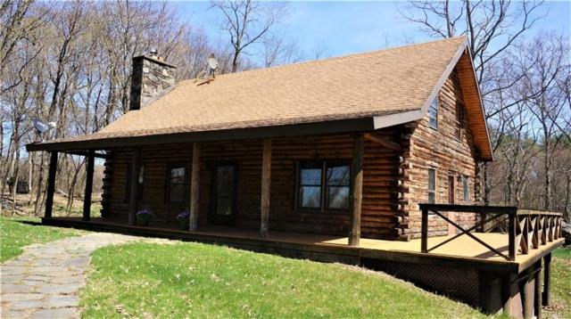 5862 Route 9, Rhinebeck, NY 12572 (MLS #4922778) :: William Raveis Legends Realty Group