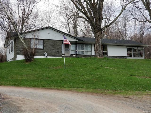 640 State Route 17B, Monticello, NY 12701 (MLS #4922852) :: William Raveis Legends Realty Group