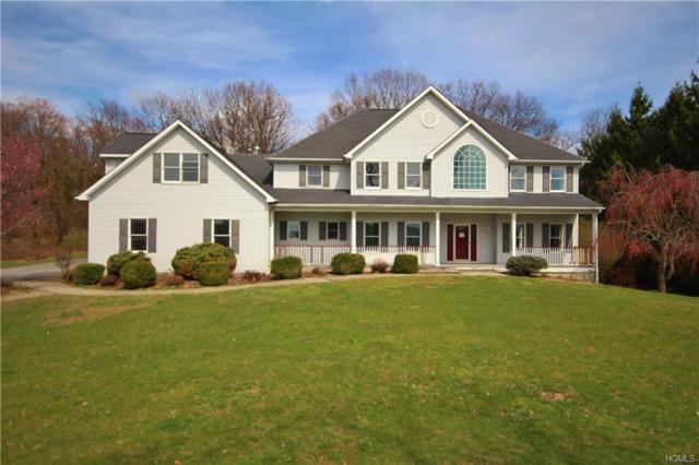 10 Settlers Court, Poughkeepsie, NY 12603 (MLS #4922870) :: Mark Seiden Real Estate Team