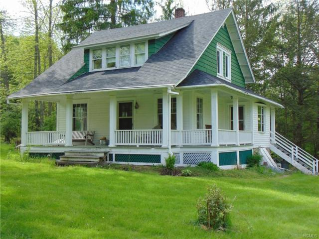 78 County Road 164, Jeffersonville, NY 12748 (MLS #4922977) :: William Raveis Legends Realty Group