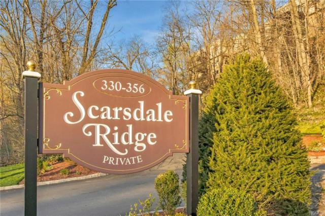 344 Central Park Avenue B24, Scarsdale, NY 10583 (MLS #4923003) :: Mark Boyland Real Estate Team