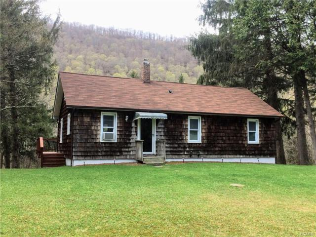 14948 Cr 17, Roscoe, NY 12776 (MLS #4923168) :: William Raveis Legends Realty Group