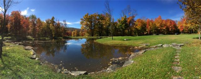 Blueberry Hill, Livingston Manor, NY 12758 (MLS #4923184) :: Mark Seiden Real Estate Team