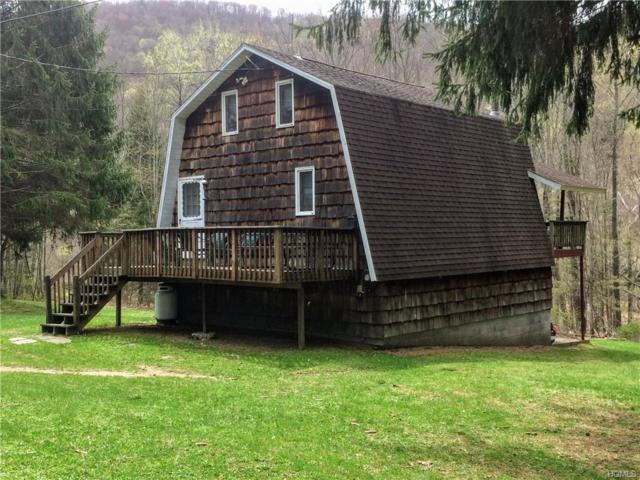 14950 County Hwy 17, Roscoe, NY 12776 (MLS #4923189) :: William Raveis Legends Realty Group