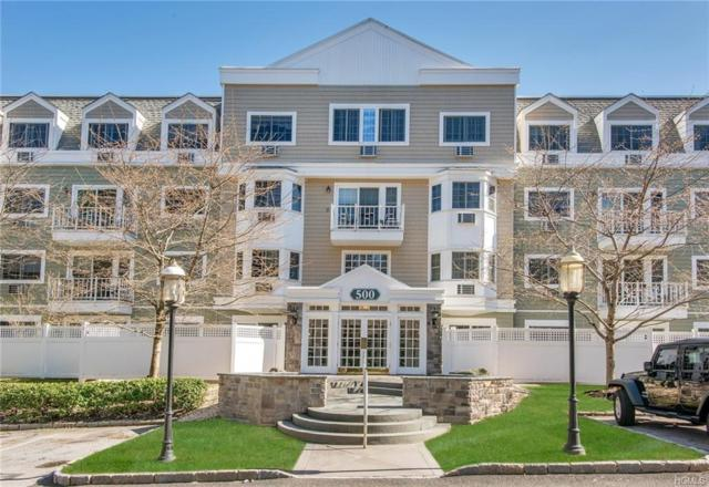 500 Pondside Drive 1B, White Plains, NY 10607 (MLS #4923228) :: William Raveis Legends Realty Group