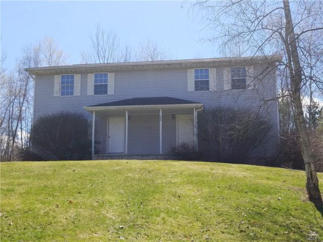 2051 State Route 300, Wallkill, NY 12589 (MLS #4923518) :: William Raveis Baer & McIntosh
