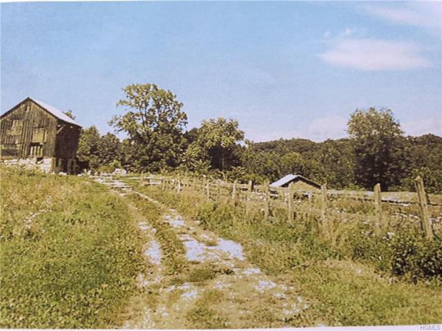 Old Post Road, Newburgh, NY 12542 (MLS #4923583) :: William Raveis Baer & McIntosh