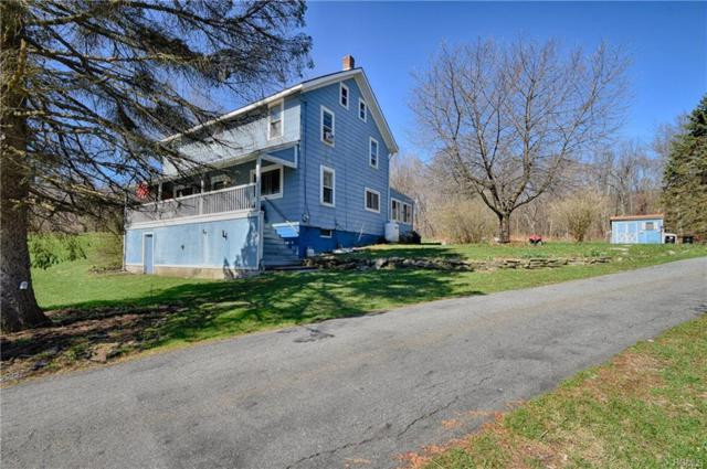 581 Mountain Road, Port Jervis, NY 12771 (MLS #4923603) :: William Raveis Legends Realty Group