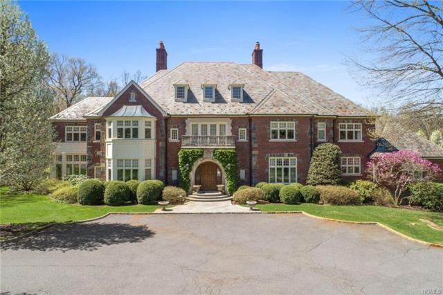 3 Cowdray Park Drive, Armonk, NY 10504 (MLS #4923672) :: William Raveis Legends Realty Group