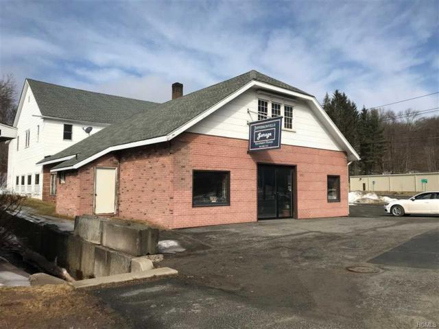 4992 State Route 52, Jeffersonville, NY 12748 (MLS #4923759) :: William Raveis Legends Realty Group