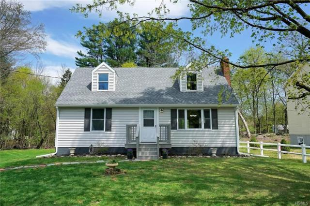 20 Cathy Road, Poughkeepsie, NY 12603 (MLS #4923807) :: Shares of New York