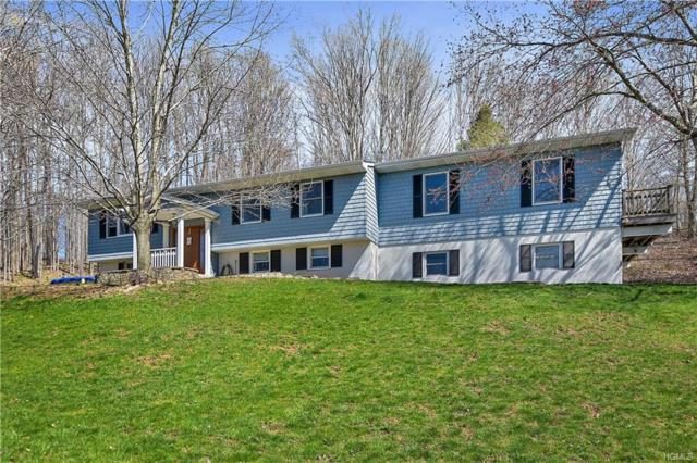 280 Route 216, Stormville, NY 12582 (MLS #4924096) :: Mark Boyland Real Estate Team