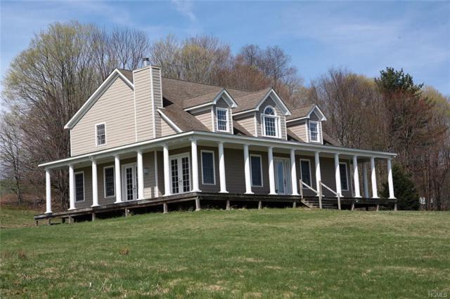 343 Layton Road, Equinunk, NY 18417 (MLS #4924795) :: William Raveis Legends Realty Group