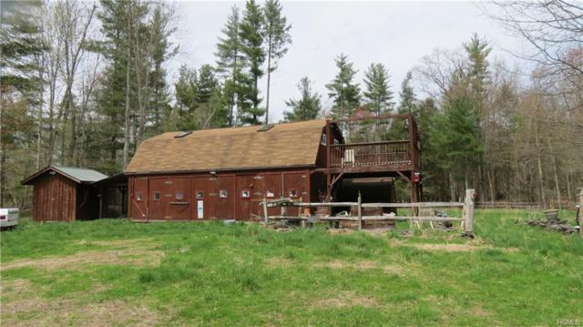 254 Humphrey Road, Narrowsburg, NY 12764 (MLS #4924850) :: Mark Boyland Real Estate Team