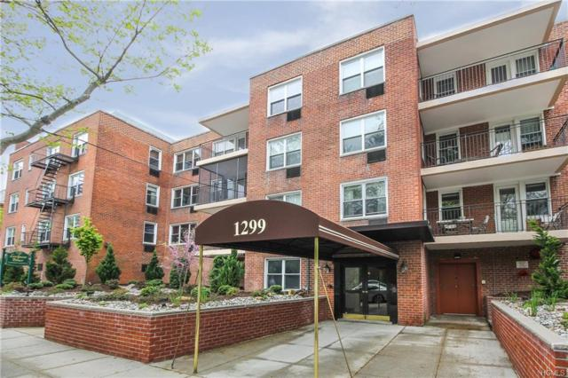 1299 Palmer Avenue #314, Larchmont, NY 10538 (MLS #4926012) :: William Raveis Legends Realty Group