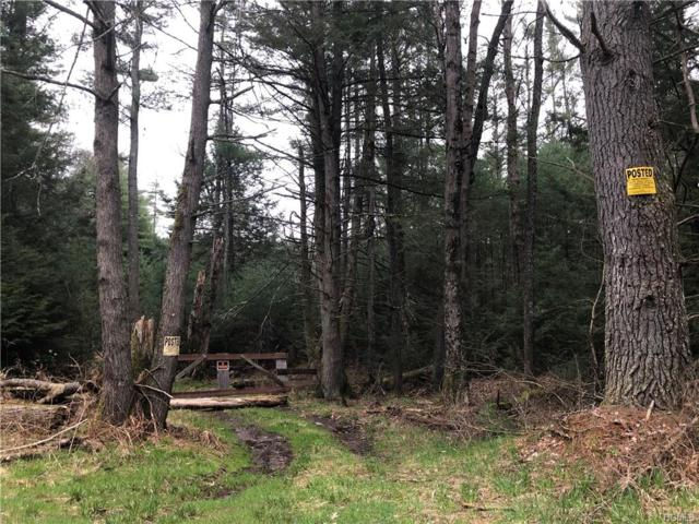 Swamp Pond Road Tr 37, Narrowsburg, NY 12764 (MLS #4926096) :: Mark Boyland Real Estate Team