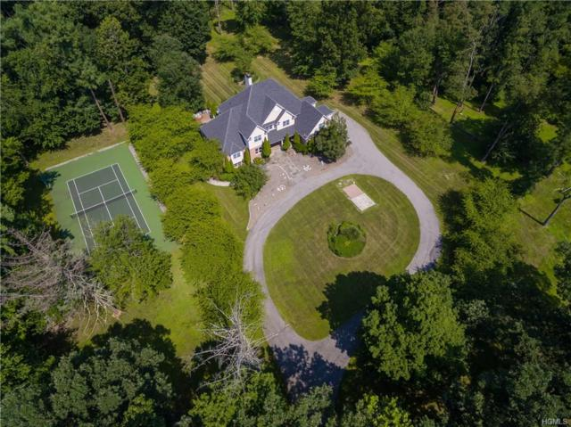 1179 Beekman Road, Hopewell Junction, NY 12533 (MLS #4926109) :: Mark Boyland Real Estate Team