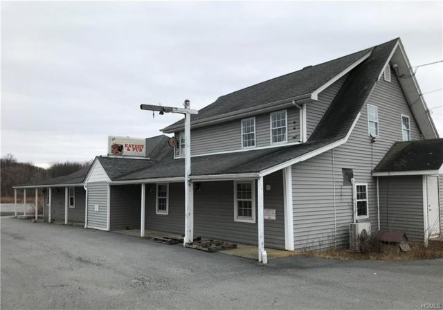 980 Us Highway 6, Port Jervis, NY 12771 (MLS #4926266) :: William Raveis Legends Realty Group