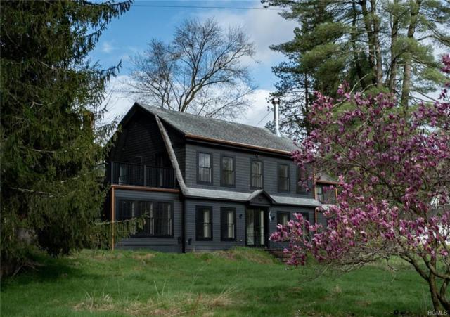 70 Erie Avenue, Narrowsburg, NY 12764 (MLS #4926331) :: Mark Boyland Real Estate Team