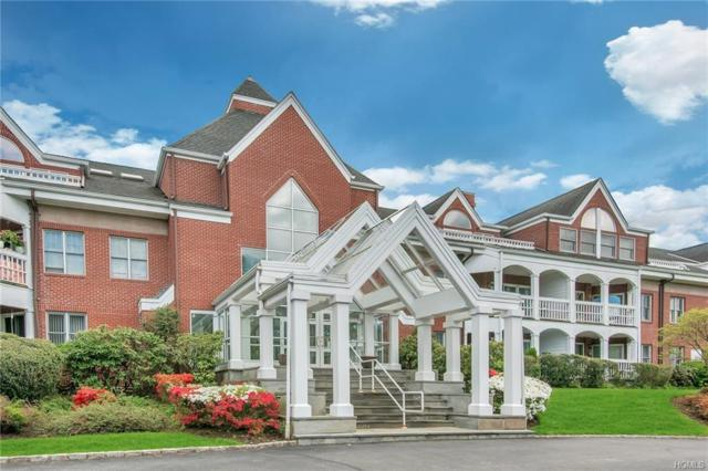 333 N State Road #9, Briarcliff Manor, NY 10510 (MLS #4926672) :: William Raveis Baer & McIntosh