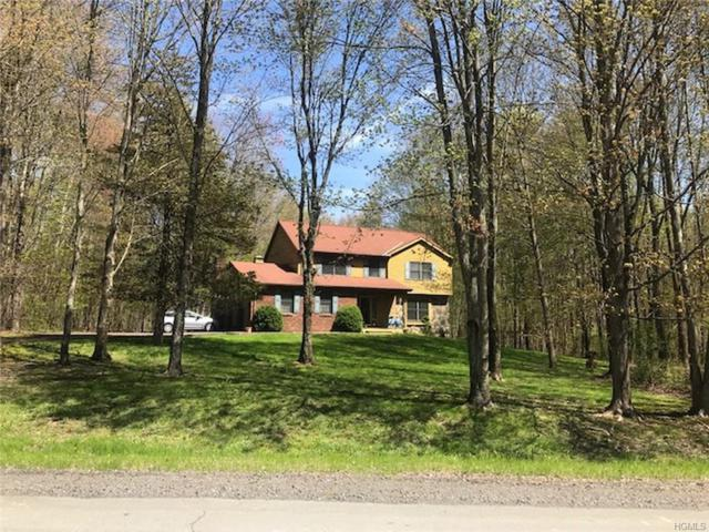 9 Amani Drive, Gardiner, NY 12525 (MLS #4926785) :: William Raveis Legends Realty Group