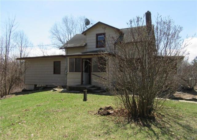276 Hull Road, Elizaville, NY 12523 (MLS #4926843) :: William Raveis Legends Realty Group