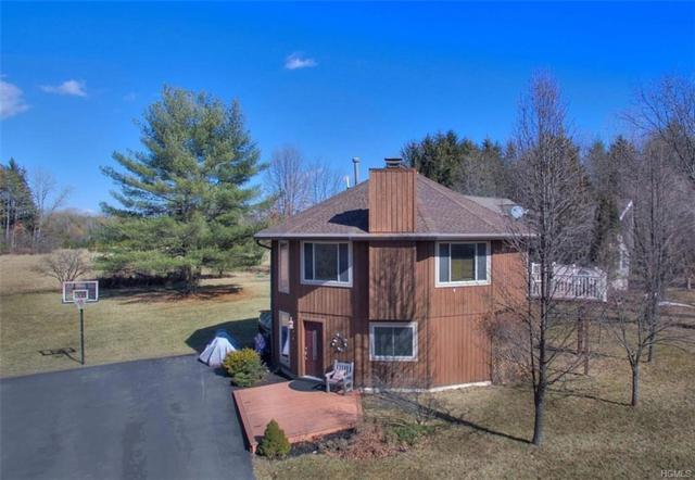1334 Sleepy Hollow Road, Athens, NY 12015 (MLS #4927184) :: William Raveis Legends Realty Group