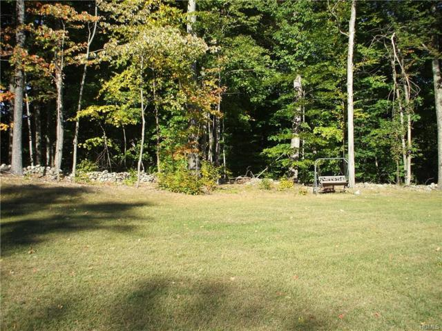 Ns Everett Road, Campbell Hall, NY 10916 (MLS #4928000) :: The Anthony G Team