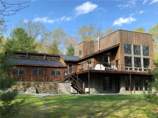 209 Black Forest Road, Glen Spey, NY 12737 (MLS #4928314) :: Mark Boyland Real Estate Team