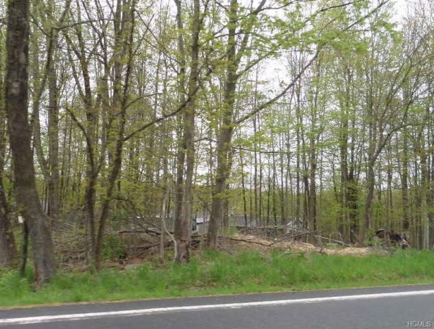 County Route 22, Middletown, NY 10940 (MLS #4928720) :: Mark Boyland Real Estate Team