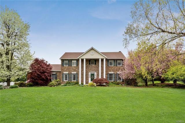 9 Bianca Boulevard, Chester, NY 10918 (MLS #4928749) :: Mark Boyland Real Estate Team