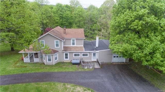 596 Angola Road, Cornwall, NY 12518 (MLS #4929992) :: Mark Boyland Real Estate Team