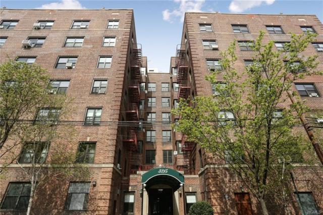 3215 Netherland Avenue 4-B, Bronx, NY 10463 (MLS #4930000) :: William Raveis Legends Realty Group