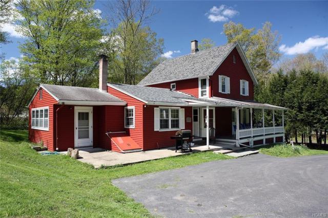 50 John Deck Road, Long Eddy, NY 12760 (MLS #4930219) :: William Raveis Legends Realty Group