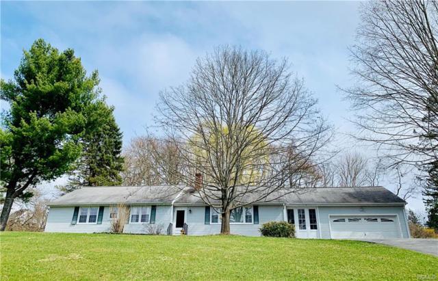 49 Clover Hill Drive, Poughkeepsie, NY 12603 (MLS #4930571) :: Mark Boyland Real Estate Team