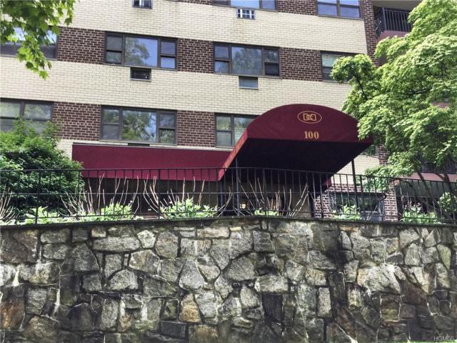 100 Diplomat Drive 8E, Mount Kisco, NY 10549 (MLS #4930683) :: William Raveis Legends Realty Group