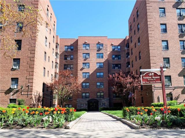 505 E Lincoln Avenue #614, Mount Vernon, NY 10552 (MLS #4930942) :: Mark Boyland Real Estate Team