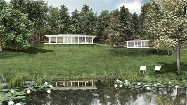 307 Round Lake Road, Rhinebeck, NY 12572 (MLS #4931312) :: William Raveis Legends Realty Group