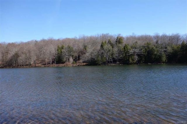 Lot 31 Black Bear Crossing, Parksville, NY 12725 (MLS #4931383) :: The Anthony G Team