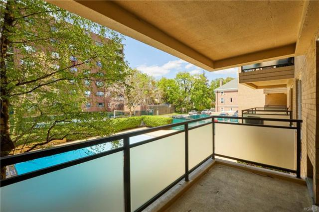 377 Westchester Avenue 1A, Port Chester, NY 10573 (MLS #4931561) :: Shares of New York