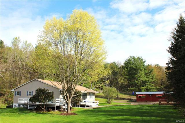 30 Schillings Crossings, Canaan, NY 12029 (MLS #4931792) :: William Raveis Legends Realty Group