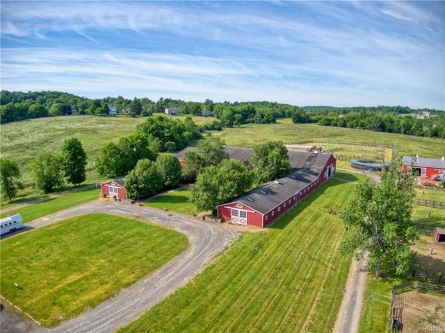 83 Farley Lane, Campbell Hall, NY 10924 (MLS #4932515) :: William Raveis Legends Realty Group